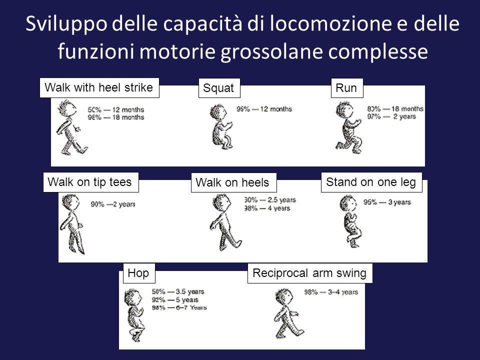 Sviluppo delle capacità di locomozione e delle funzioni motorie grossolane complesse Walk with heel strike SquatRun Walk on tip tees Walk on heels Sta
