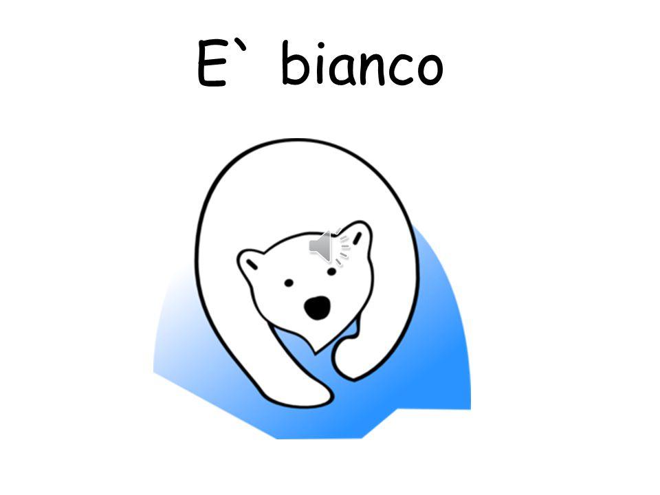 E` blu