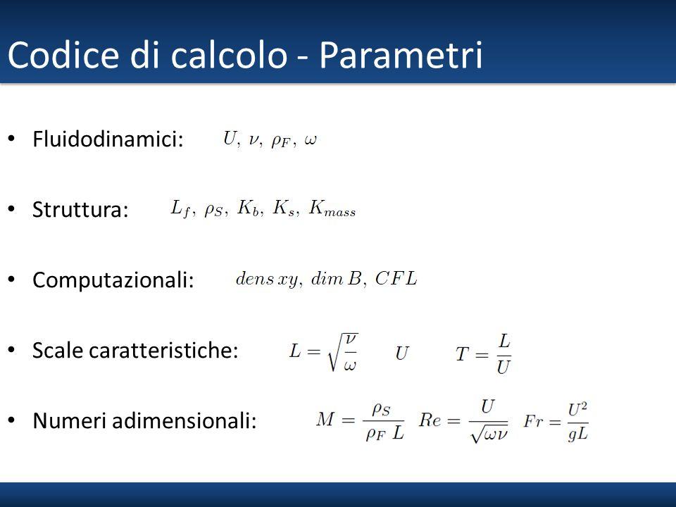 Codice di calcolo - Parametri Fluidodinamici: Struttura: Computazionali: Scale caratteristiche: Numeri adimensionali: