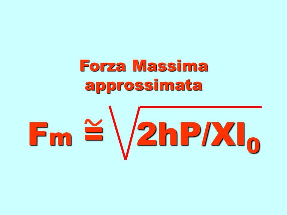 Fm Fm Fm Fm = P + P2 P2 P2 P2 + 2hP / Xl 0 P = peso h = altezza caduta l 0 l 0 = lunghezza corda X = coefficiente elasticità Forza Massima Ritenendo t