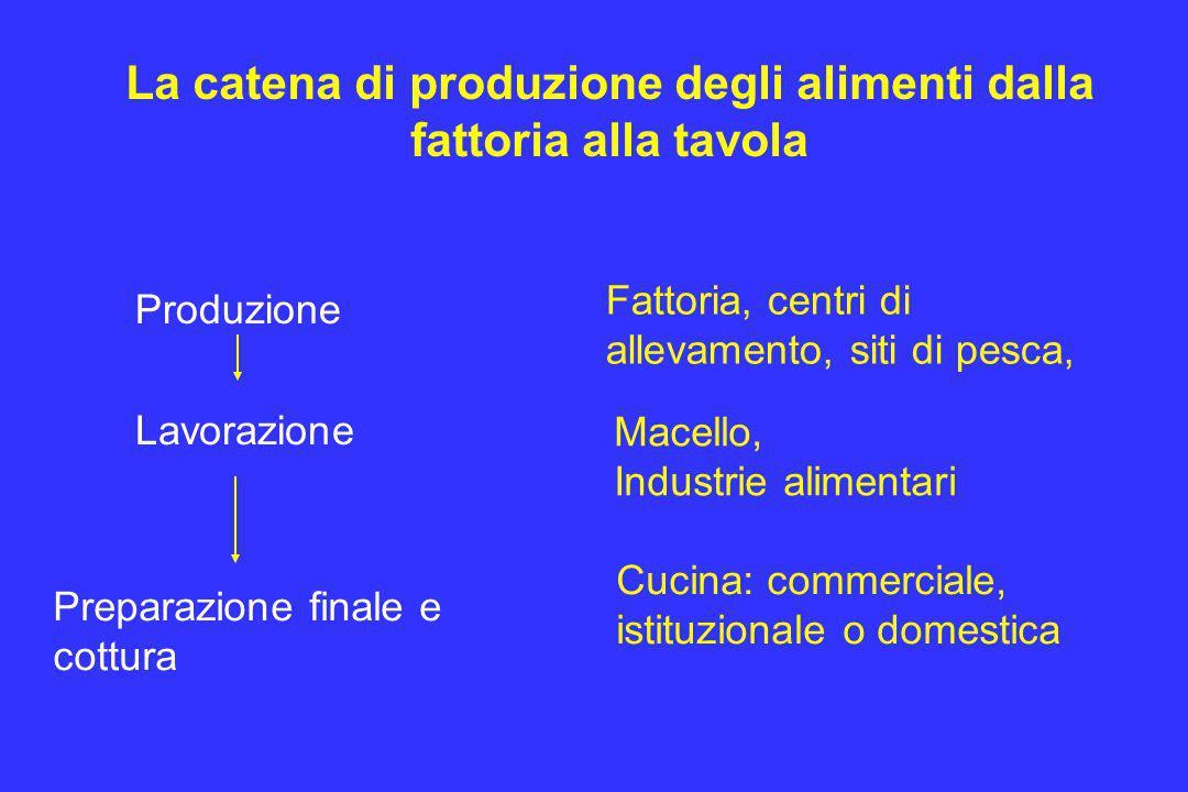 La catena di produzione degli alimenti dalla fattoria alla tavola Produzione Lavorazione Preparazione finale e cottura Fattoria, centri di allevamento