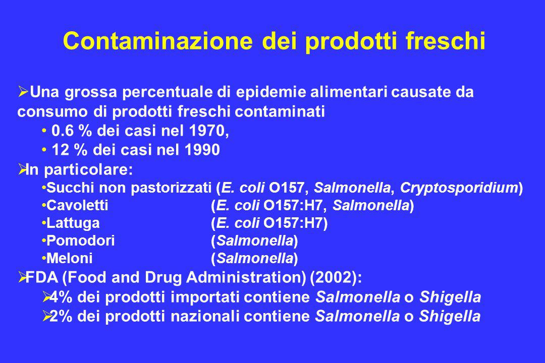 Contaminazione dei prodotti freschi  Una grossa percentuale di epidemie alimentari causate da consumo di prodotti freschi contaminati 0.6 % dei casi