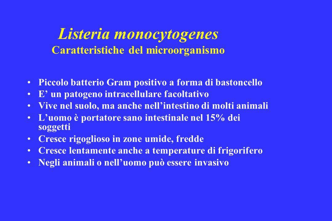 Listeria monocytogenes Caratteristiche del microorganismo Piccolo batterio Gram positivo a forma di bastoncello E' un patogeno intracellulare facoltat