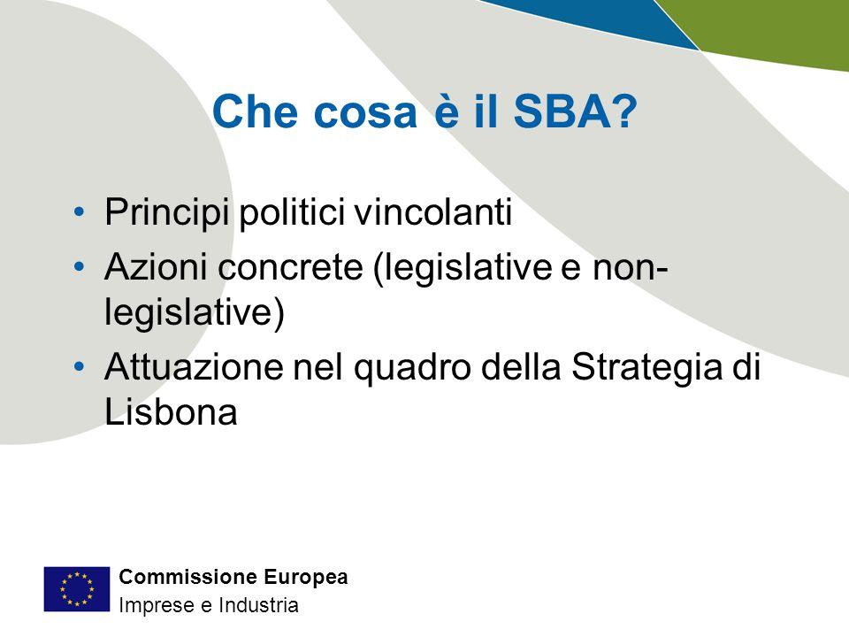 Commissione Europea Imprese e Industria Che cosa è il SBA.