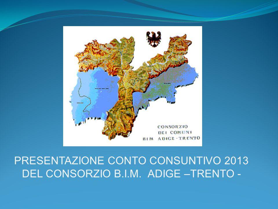 PRESENTAZIONE CONTO CONSUNTIVO 2013 DEL CONSORZIO B.I.M. ADIGE –TRENTO -