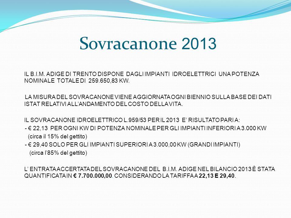 Sovracanone 2013 IL B.I.M.