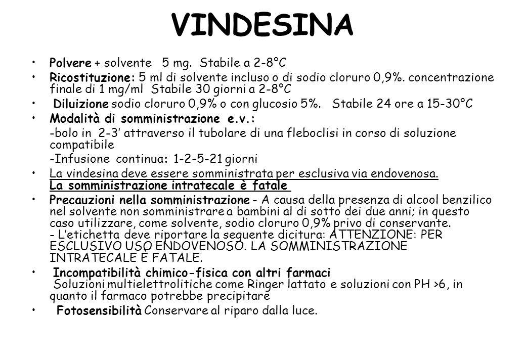 VINDESINA Polvere + solvente 5 mg.