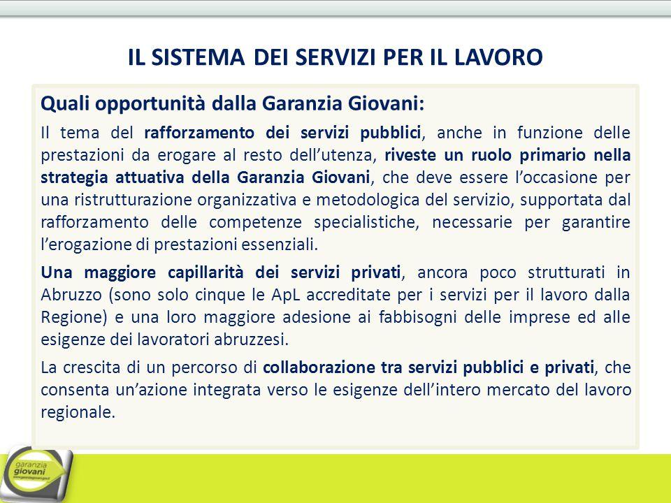 Quali opportunità dalla Garanzia Giovani: Il tema del rafforzamento dei servizi pubblici, anche in funzione delle prestazioni da erogare al resto dell