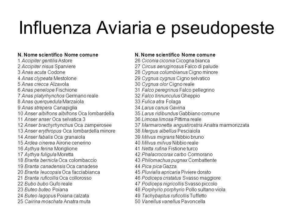 Influenza Aviaria e pseudopeste N. Nome scientifico Nome comune 1 Accipiter gentilis Astore 26 Ciconia ciconia Cicogna bianca 2 Accipiter nisus Sparvi