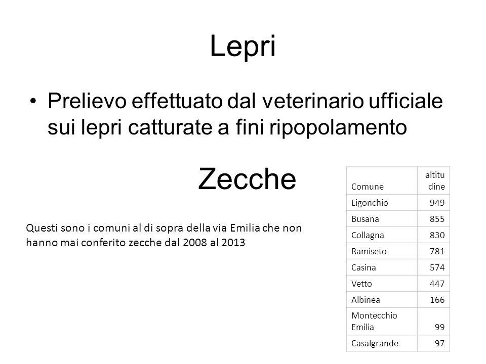 Lepri Prelievo effettuato dal veterinario ufficiale sui lepri catturate a fini ripopolamento Zecche Questi sono i comuni al di sopra della via Emilia