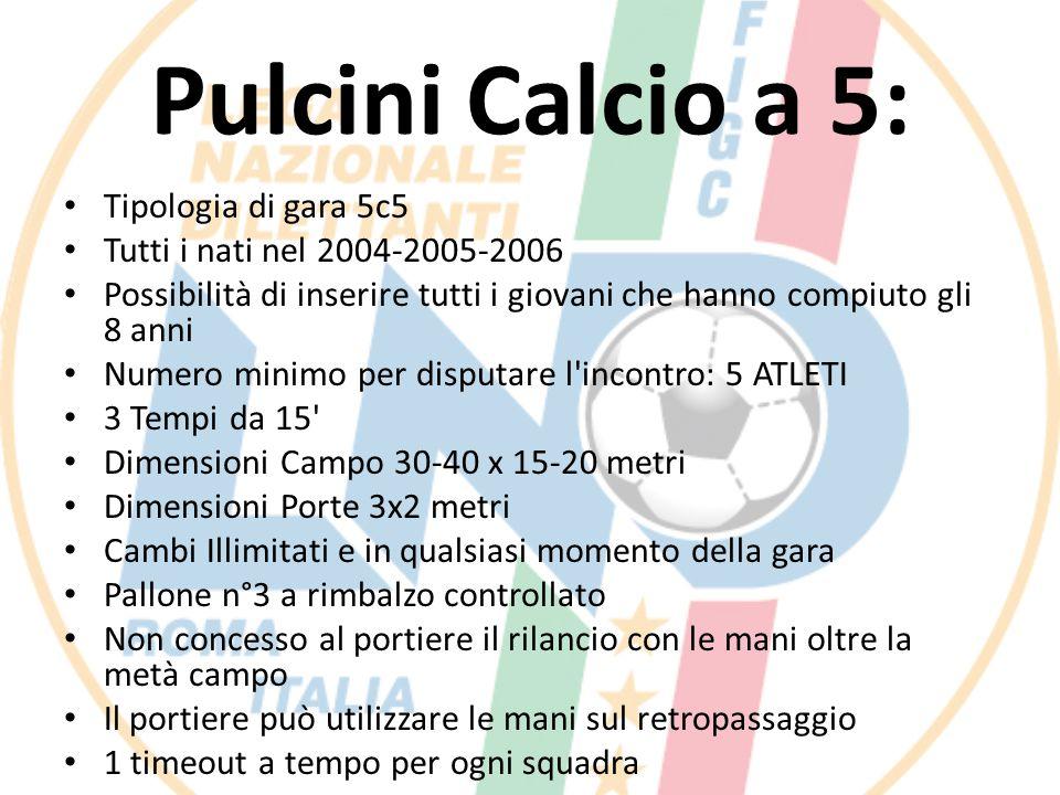 Pulcini Calcio a 5: Tipologia di gara 5c5 Tutti i nati nel 2004-2005-2006 Possibilità di inserire tutti i giovani che hanno compiuto gli 8 anni Numero