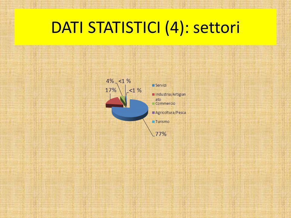 DATI STATISTICI (4): settori