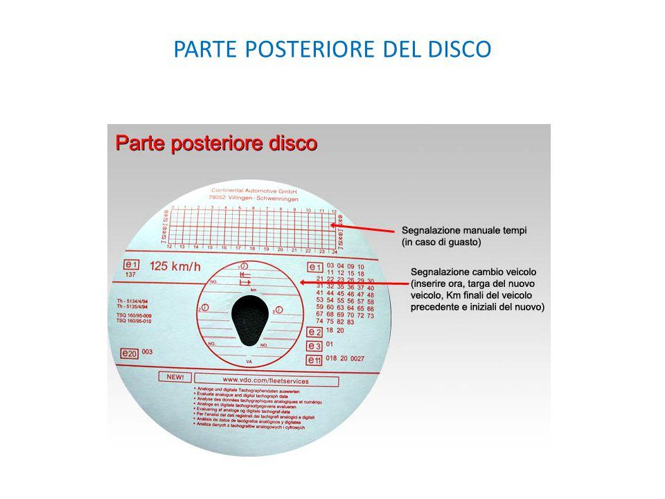 PARTE POSTERIORE DEL DISCO