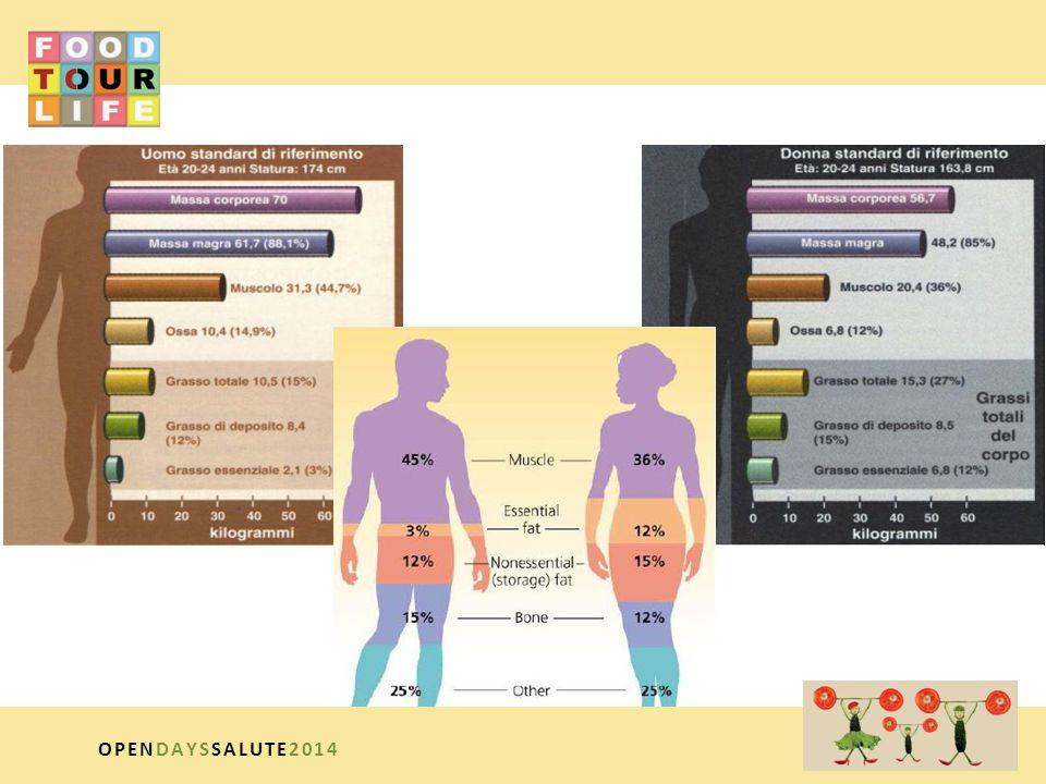FABBISOGNO ENERGETICO DELL'ATLETA SPORT DI FORZA – Glucidi 55% – Lipidi 25% – Protidi 20% SPORT DI VELOCITÀ E SCATTO – Glucidi 60% – Lipidi 20% – Protidi 20% SPORT DI RESISTENZA – Glucidi 60% – Lipidi 25% – Protidi 15% OPENDAYSSALUTE2014