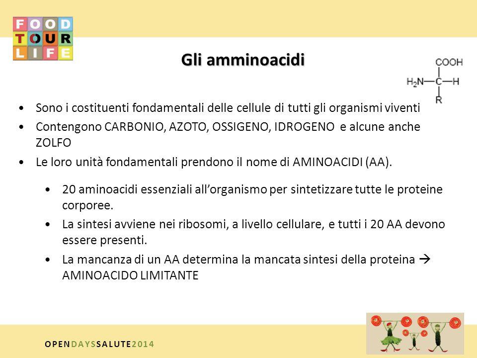 CLASSIFICAZIONE NUTRIZIONALE AMMINOACIDI ESSENZIALI : devono necessariamente essere introdotti preformati con la dieta valina leucina isoleucina metionina fenilalanina triptofano istidina (bambini e fase crescita) lisina treonina AMMINOACIDI NON ESSENZIALI i.semi-indispensabili risparmiano i precursori essenziali tirosina (sintetizzata da fenilalanina) cisteina (sintetizzata da metionina) OPENDAYSSALUTE2014