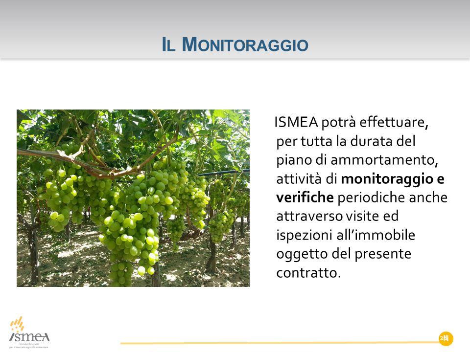 I L M ONITORAGGIO ISMEA potrà effettuare, per tutta la durata del piano di ammortamento, attività di monitoraggio e verifiche periodiche anche attrave