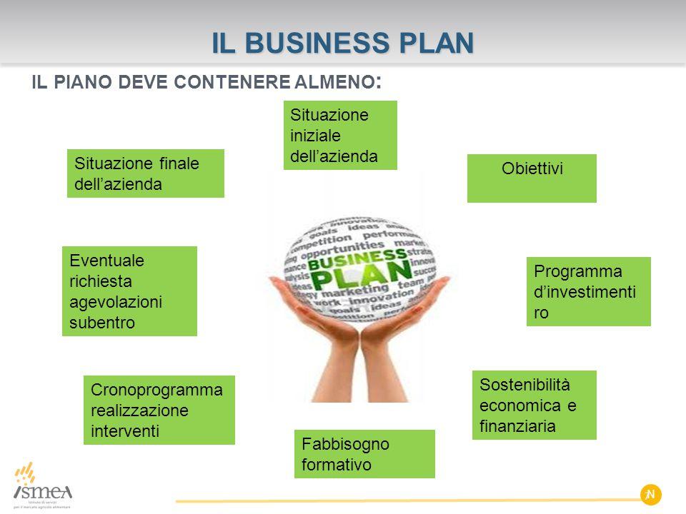 N IL BUSINESS PLAN IL PIANO DEVE CONTENERE ALMENO : 7 Situazione iniziale dell'azienda Obiettivi Programma d'investimenti ro Sostenibilità economica e