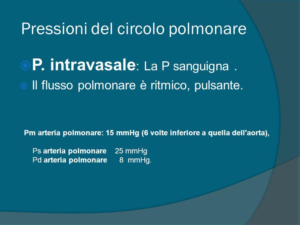 Pressioni del circolo polmonare  P. intravasale : La P sanguigna.  Il flusso polmonare è ritmico, pulsante. Pm arteria polmonare: 15 mmHg (6 volte i