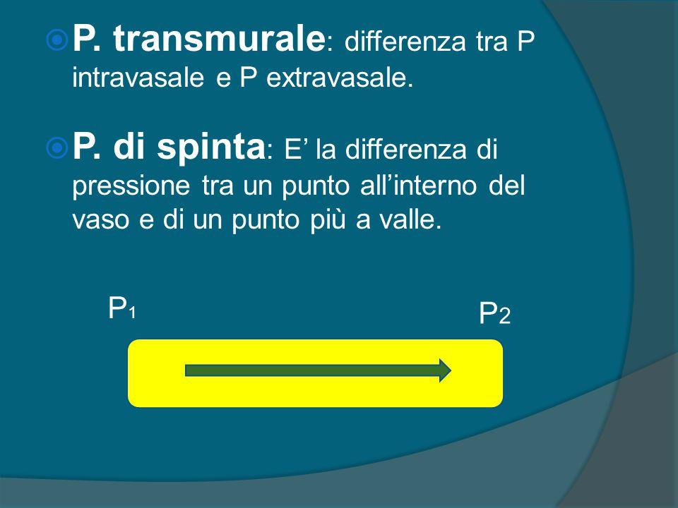  P. di spinta : E' la differenza di pressione tra un punto all'interno del vaso e di un punto più a valle. P1P1 P2P2  P. transmurale : differenza tr
