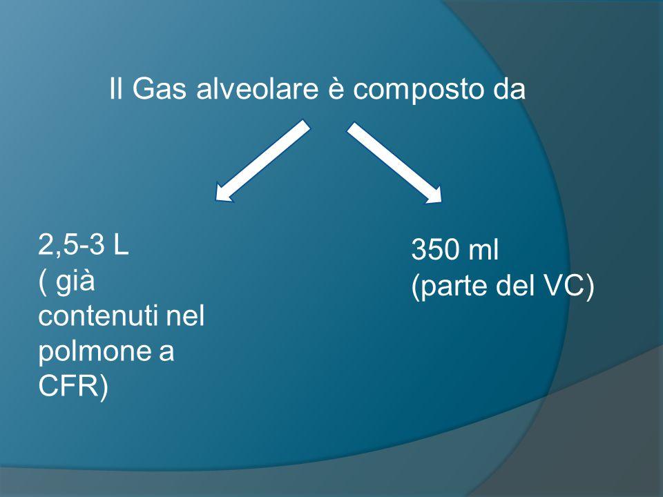 Il Gas alveolare è composto da 2,5-3 L ( già contenuti nel polmone a CFR) 350 ml (parte del VC)
