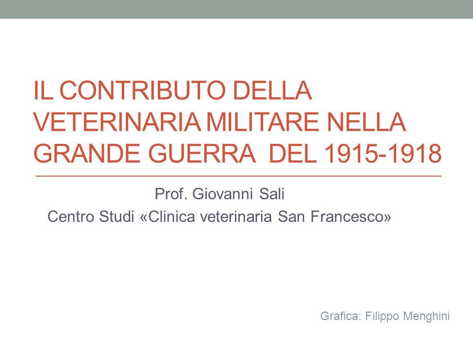 IL CONTRIBUTO DELLA VETERINARIA MILITARE NELLA GRANDE GUERRA DEL 1915-1918 Prof. Giovanni Sali Centro Studi «Clinica veterinaria San Francesco» Grafic