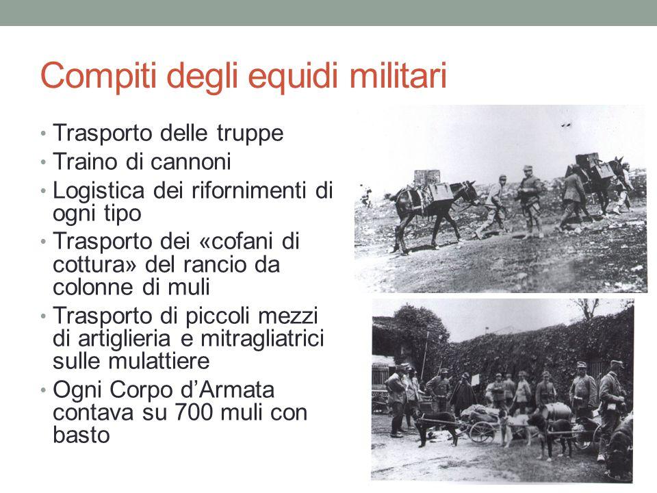 Compiti degli equidi militari Trasporto delle truppe Traino di cannoni Logistica dei rifornimenti di ogni tipo Trasporto dei «cofani di cottura» del r