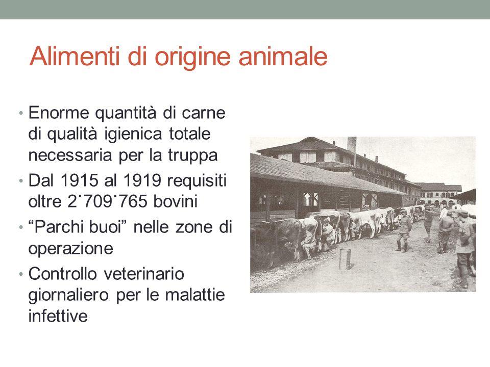 Alimenti di origine animale Enorme quantità di carne di qualità igienica totale necessaria per la truppa Dal 1915 al 1919 requisiti oltre 2˙709˙765 bo