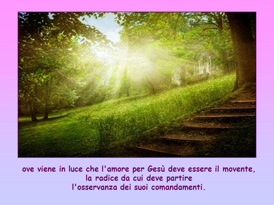 ove viene in luce che l amore per Gesù deve essere il movente, la radice da cui deve partire l osservanza dei suoi comandamenti.