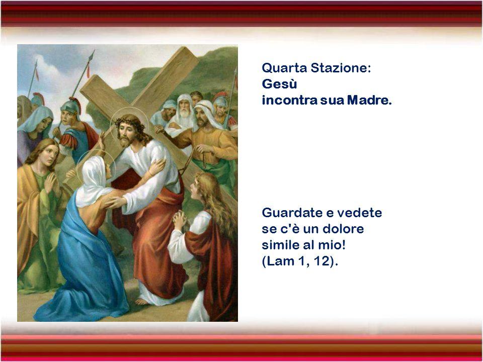 Terza Stazione: Gesù cade per la prima volta. Il Signore fece ricadere su di Lui l'iniquità di noi tutti ed Egli ha portato il peccato della moltitudi
