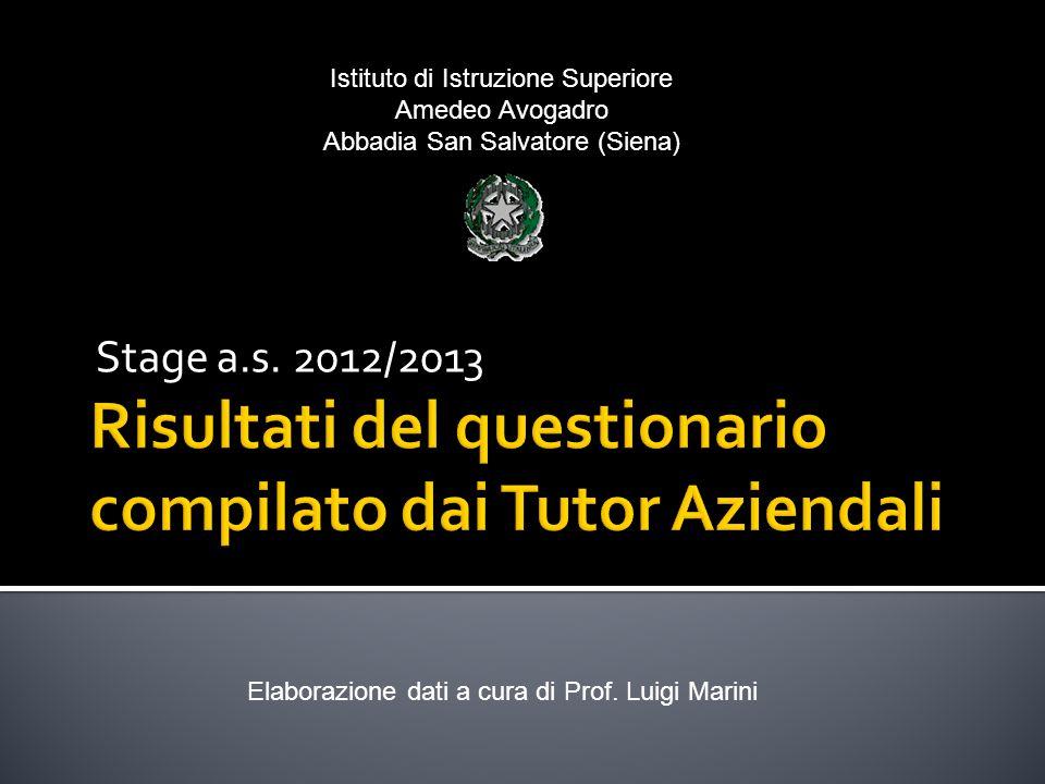 Stage a.s.2012/2013 Elaborazione dati a cura di Prof.