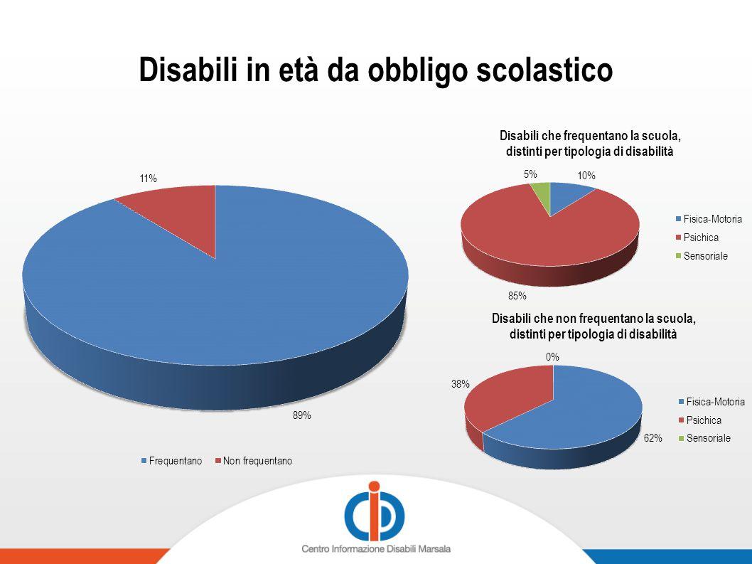 Disabili in età lavorativa