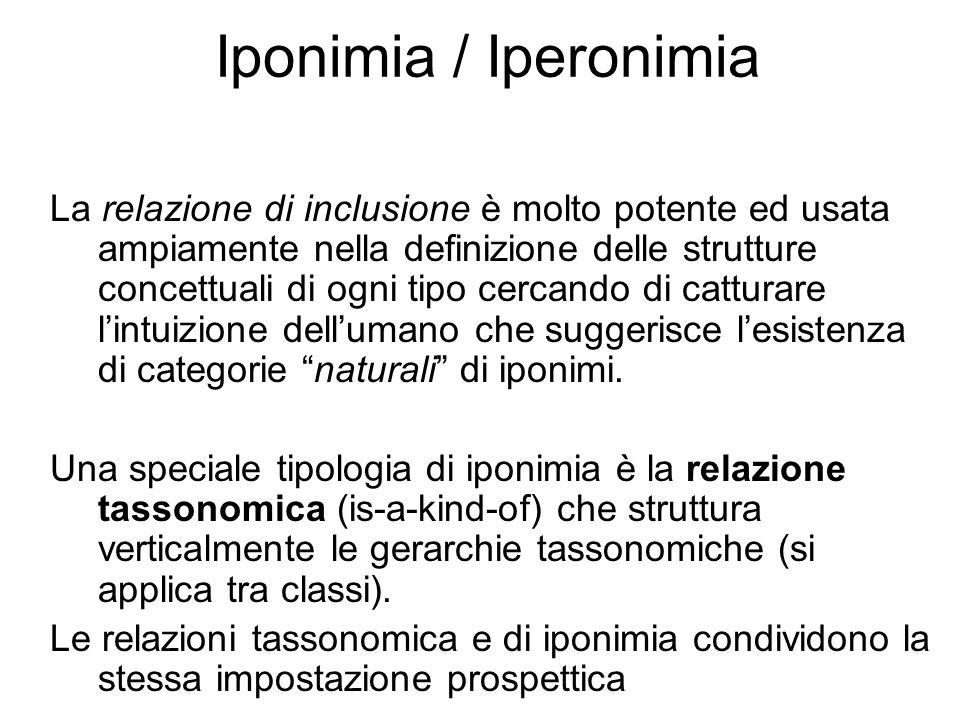 Iponimia / Iperonimia La relazione di inclusione è molto potente ed usata ampiamente nella definizione delle strutture concettuali di ogni tipo cercando di catturare l'intuizione dell'umano che suggerisce l'esistenza di categorie naturali di iponimi.
