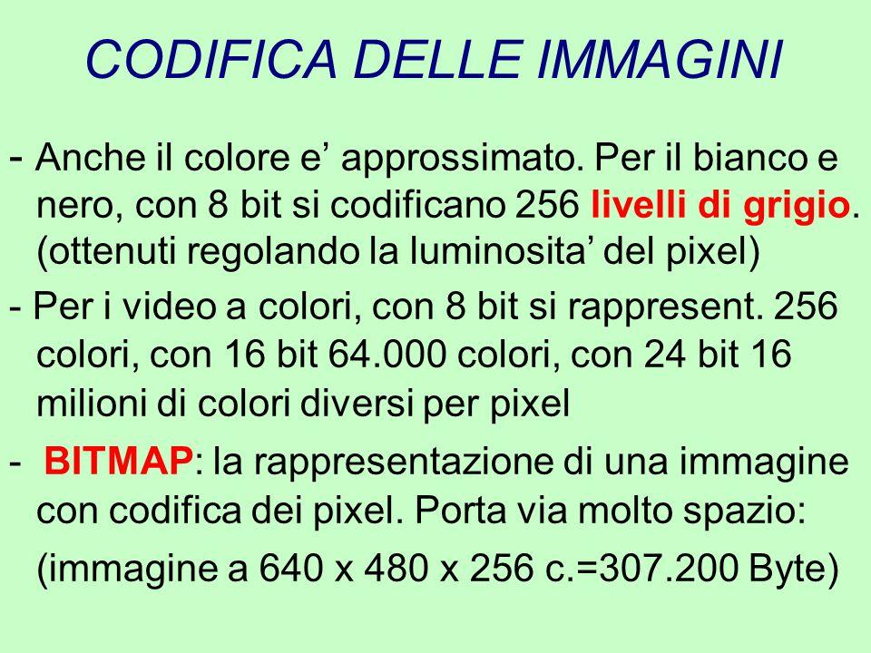 CODIFICA DELLE IMMAGINI - Anche il colore e' approssimato. Per il bianco e nero, con 8 bit si codificano 256 livelli di grigio. (ottenuti regolando la