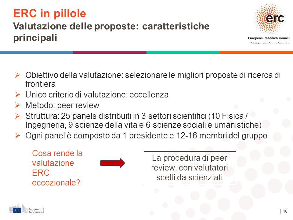 Established by the European Commission  Obiettivo della valutazione: selezionare le migliori proposte di ricerca di frontiera  Unico criterio di val