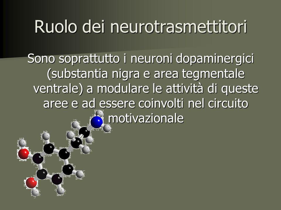 Ruolo dei neurotrasmettitori Sono soprattutto i neuroni dopaminergici (substantia nigra e area tegmentale ventrale) a modulare le attività di queste aree e ad essere coinvolti nel circuito motivazionale