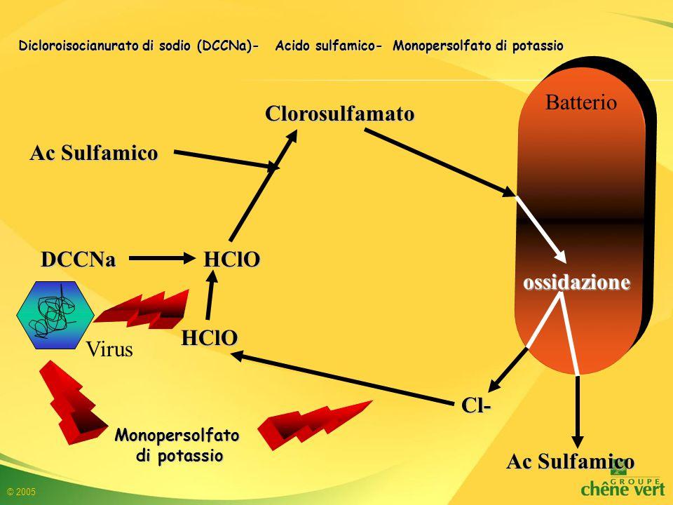 © 2005 DCCNa HClO Ac Sulfamico HClO Clorosulfamato Cl- Dicloroisocianurato di sodio (DCCNa)- Acido sulfamico- Monopersolfato di potassio Monopersolfato di potassio ossidazione Batterio Virus