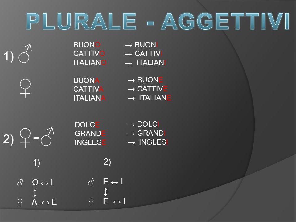 BUONO CATTIVO ITALIANO BUONA CATTIVA ITALIANA DOLCE GRANDE INGLESE → BUONI → CATTIVI → ITALIANI → BUONE → CATTIVE → ITALIANE → DOLCI → GRANDI → INGLESI 1) ♂ ♀ 2) ♀-♂ 1) ♂ O ↔ I ↨ ♀ A ↔ E 2) ♂ E ↔ I ↨ ♀ E ↔ I