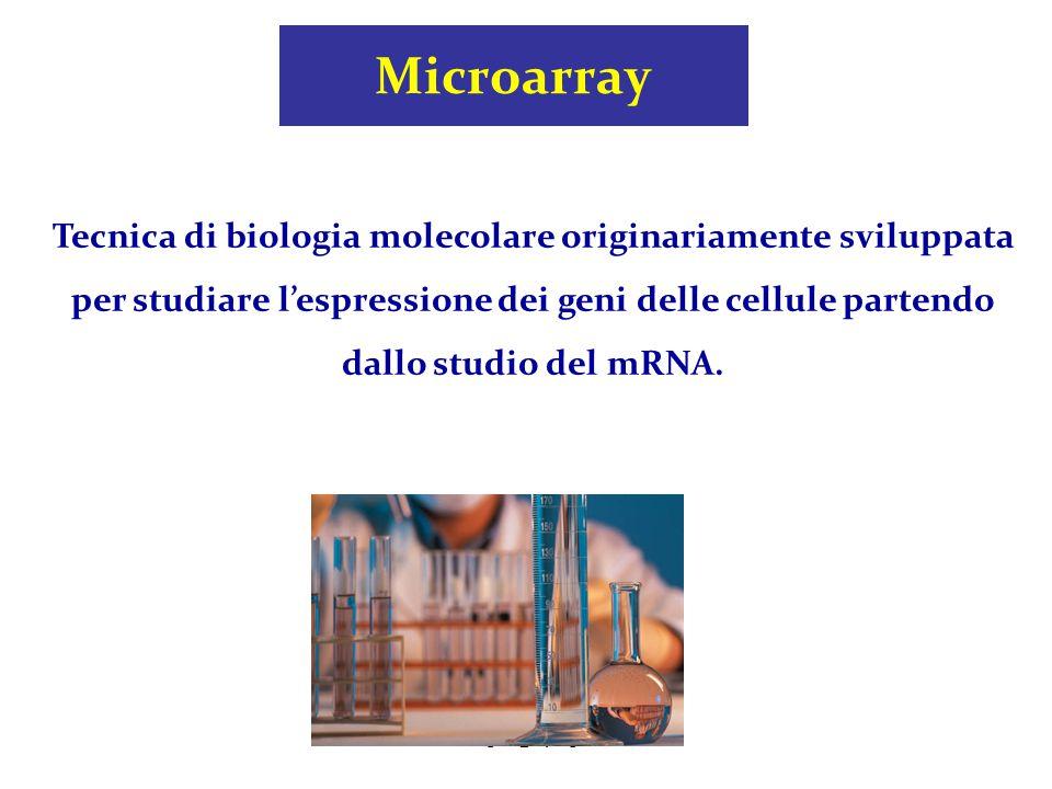 cavagni@opbg.net Microarray Tecnica di biologia molecolare originariamente sviluppata per studiare l'espressione dei geni delle cellule partendo dallo
