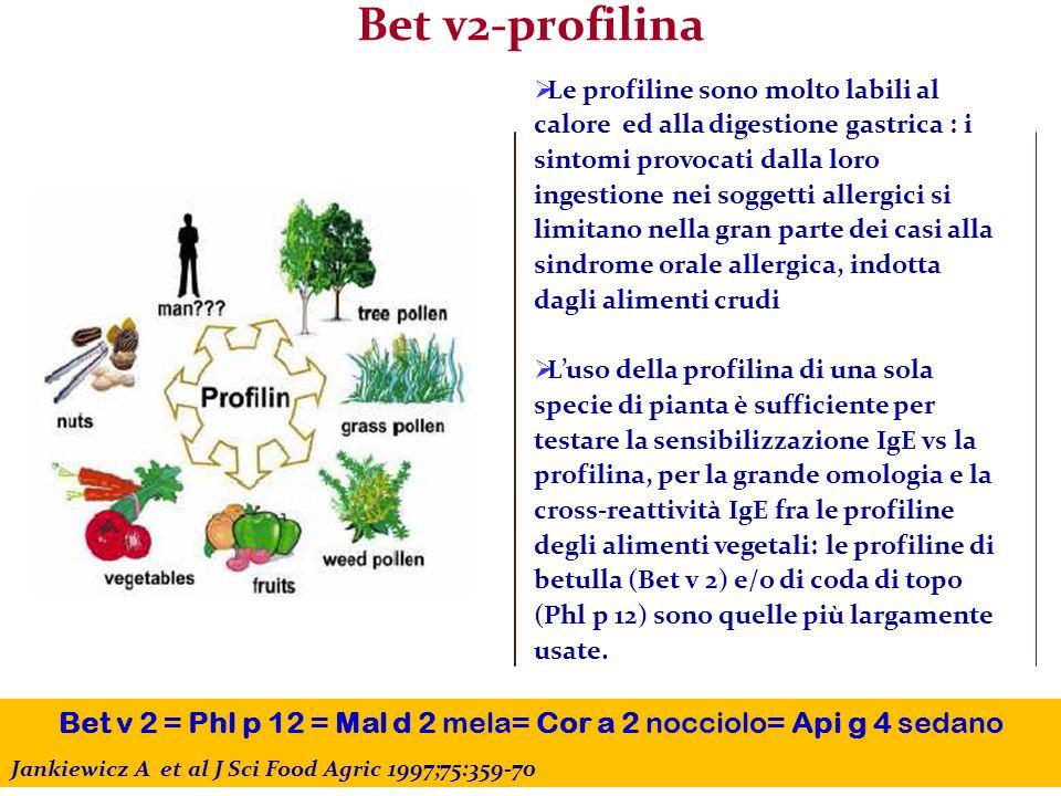 Bet v2-profilina Bet v 2 = Phl p 12 = Mal d 2 mela= Cor a 2 nocciolo= Api g 4 sedano Jankiewicz A et al J Sci Food Agric 1997;75:359-70  Le profiline