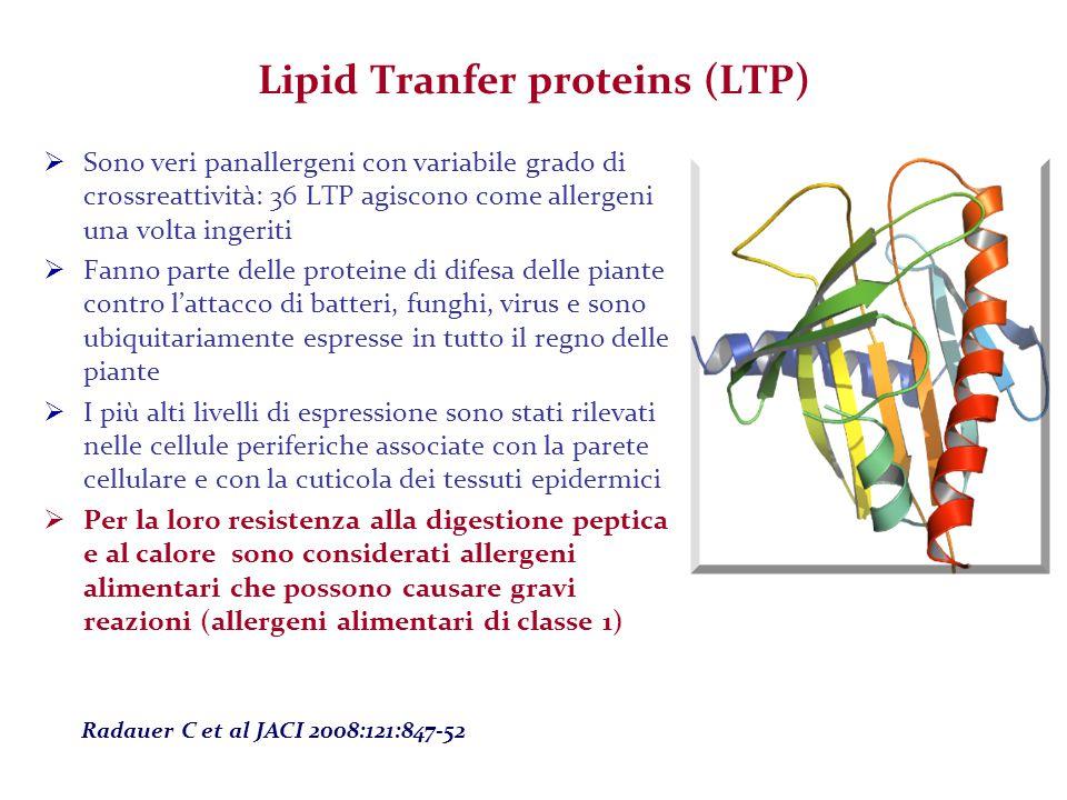 Lipid Tranfer proteins (LTP)  Sono veri panallergeni con variabile grado di crossreattività: 36 LTP agiscono come allergeni una volta ingeriti  Fann