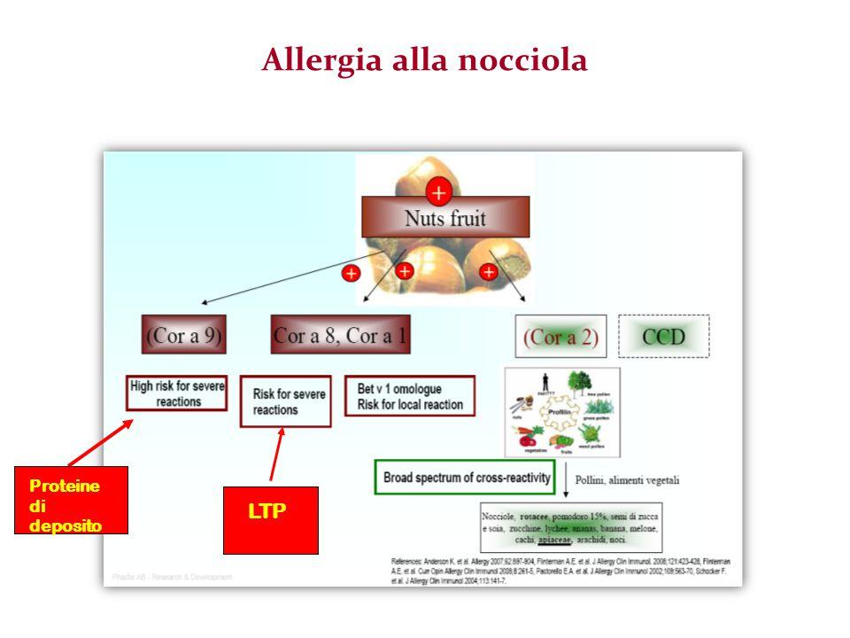 Reazione allergica immediata Reazione allergica non immediata o sospetta componente psicogena TPO in aperto DBPCFC + con sintomi oggettivi + con sintomi soggettivi Negativo Continua dieta DBPCFCDieta libera PositivoNegativo TPO in aperto Continua dietaDieta libera Algoritmo per la diagnosi di Allergia Alimentare Calvani M.