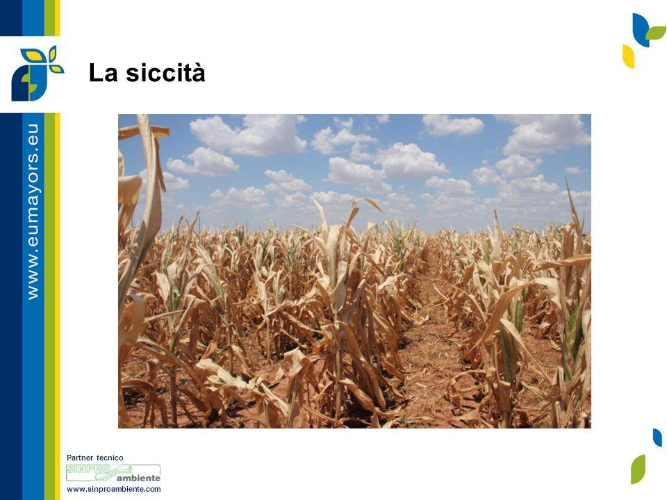 Partner tecnico www.sinproambiente.com La siccità