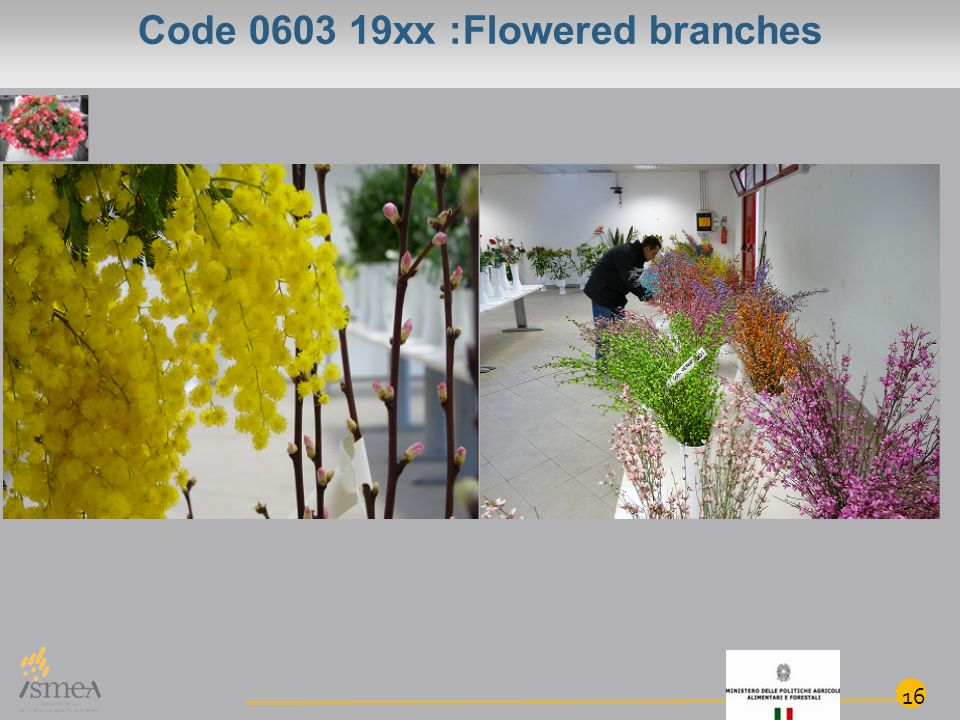 Code 0603 19xx :Flowered branches 16