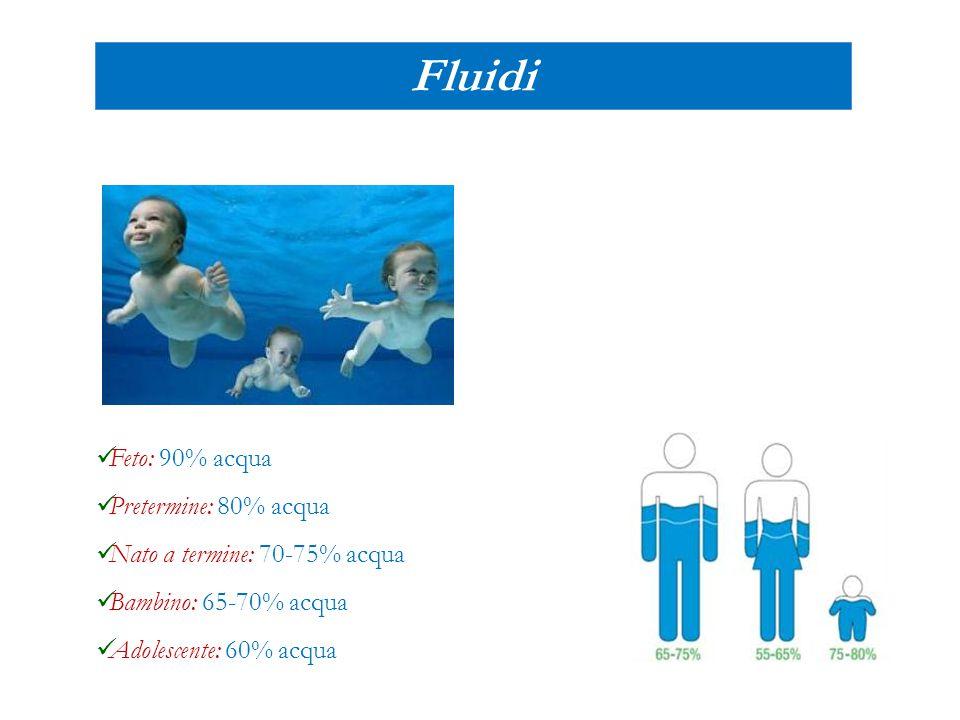Fluidi Feto: 90% acqua Pretermine: 80% acqua Nato a termine: 70-75% acqua Bambino: 65-70% acqua Adolescente: 60% acqua
