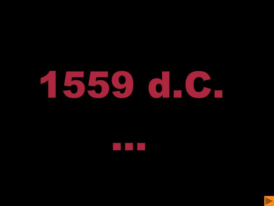 1559 d.C. …