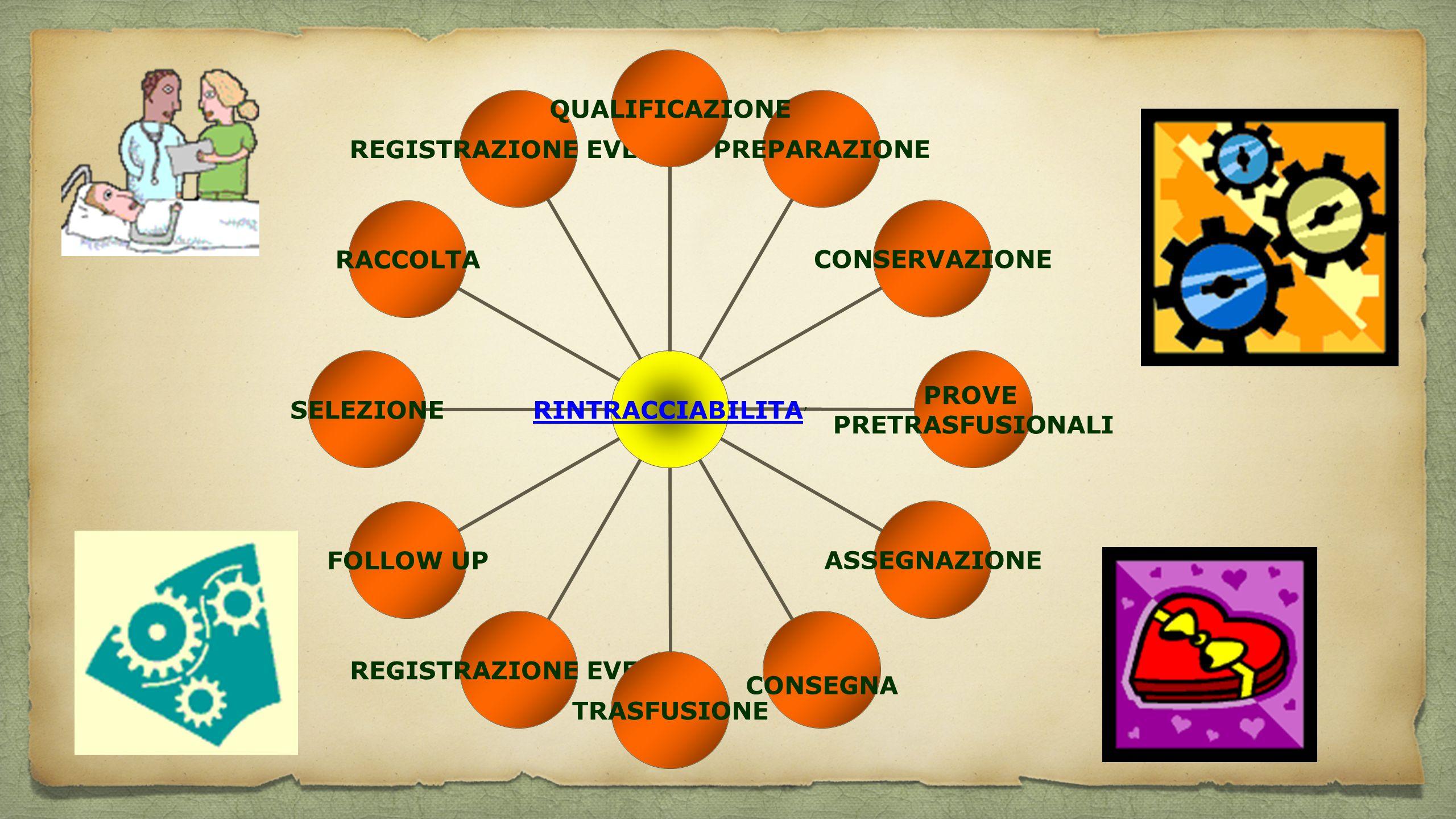 RINTRACCIABILITA'QUALIFICAZIONEPREPARAZIONECONSERVAZIONE PROVE PRETRASFUSIONALI ASSEGNAZIONE CONSEGNA TRASFUSIONE REGISTRAZIONE EVENTI FOLLOW UPSELEZI