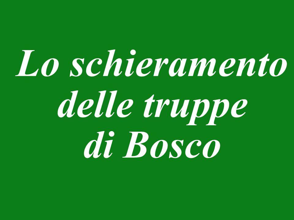 Lo schieramento delle truppe di Bosco
