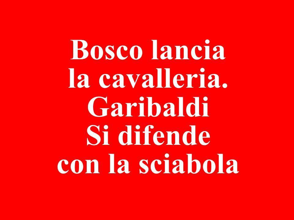Bosco lancia la cavalleria. Garibaldi Si difende con la sciabola