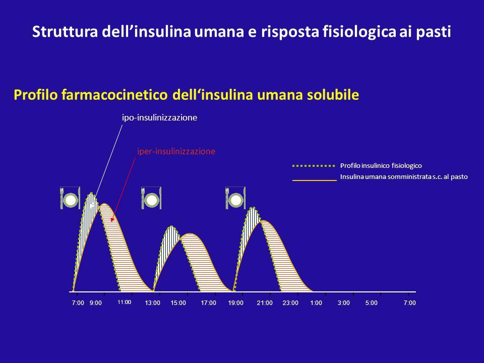 Struttura dell'insulina umana e risposta fisiologica ai pasti Profilo farmacocinetico dell'insulina umana solubile 7:00 9:00 11:00 13:00 15:0017:00 19