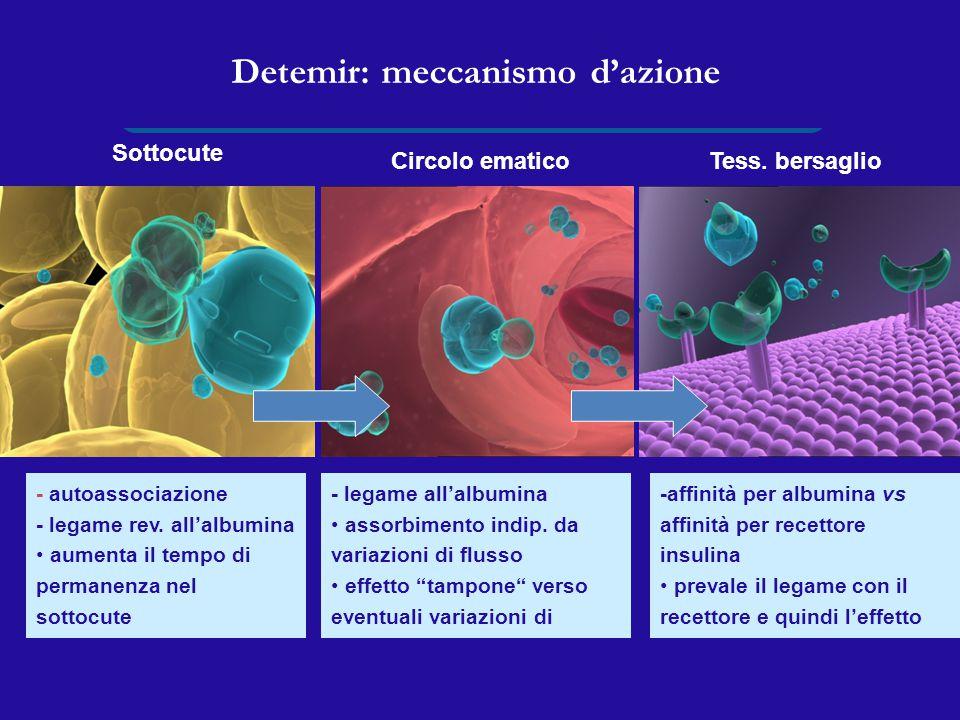 Detemir: meccanismo d'azione - autoassociazione - legame rev. all'albumina aumenta il tempo di permanenza nel sottocute passaggio in circolo lento e g